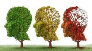 Alzheimer-Prevencion_enfermedades-Enfermedades_degenerativas-Salud_227239423_37813560_1024x576